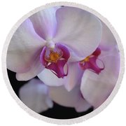 7195-orchids Round Beach Towel