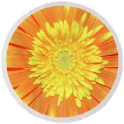 7289-yelow Gerber Round Beach Towel
