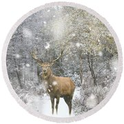 Beautiful Red Deer Stag In Snow Covered Festive Season Winter Fo Round Beach Towel