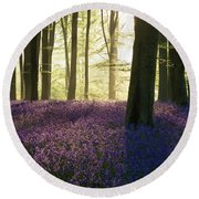 Stunning Bluebell Forest Landscape Image In Soft Sunlight In Spr Round Beach Towel