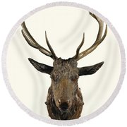 A Carved Wooden Red Deer Trophy With Red Deer Antlers, 19th Century Round Beach Towel