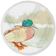 A Migrating Loon, Oslo, Norway -  Watercolor By Adam Asar Round Beach Towel