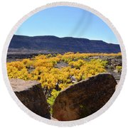 Gorgeous View Of Golden Cottonwood Trees In Canyon Round Beach Towel