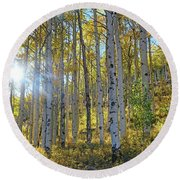 Afternoon Aspens Round Beach Towel