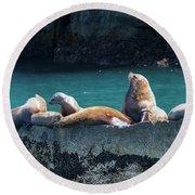 Alaska Steller Sea Lions Round Beach Towel
