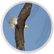 American Bald Eagle In Flight IIi Round Beach Towel
