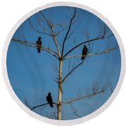 American Crows In Bare Tree Round Beach Towel
