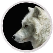 Arctic Wolf In Profile Round Beach Towel by Susan Rissi Tregoning