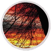 Arizona Sunset Through Branches Round Beach Towel
