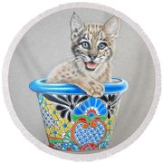 Arizona Wildcat Round Beach Towel