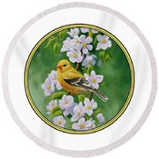 Female American Goldfinch And Apple Blossoms Round Beach Towel