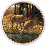 Whitetail Deer - Autumn Innocence 1 Round Beach Towel