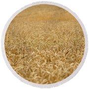 A Field Of Wheat Round Beach Towel