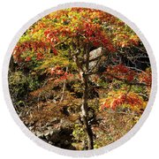 Autumn Color In Smoky Mountains National Park Round Beach Towel