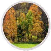 Autumn Colour In Southern Ontario Round Beach Towel