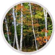 Autumn Grove, Wisconsin Round Beach Towel by Dawn Richards