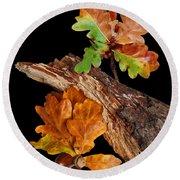 Autumn Oak Leaves And Acorns On Black Round Beach Towel