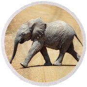 Baby African Elephant Round Beach Towel