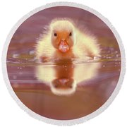 Baby Animal Series - Baby Duckling Round Beach Towel