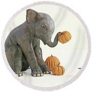 Baby Elephant And Pumpkins Round Beach Towel