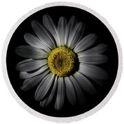 Backyard Flowers 52 Color Version Round Beach Towel by Brian Carson