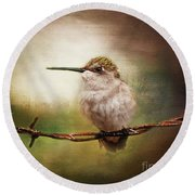 Barbed Wire Hummingbird Perch Round Beach Towel