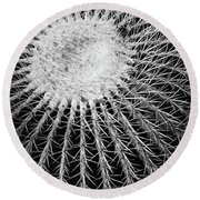Barrel Cactus Black And White Round Beach Towel