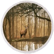 Beautiful Landscape Image Of Still Stream In Lake District Fores Round Beach Towel