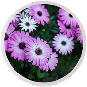 Beautiful Pink Flowers In Grass Round Beach Towel
