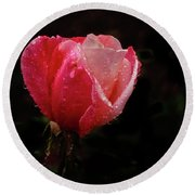 Beautiful Wet Rose Round Beach Towel
