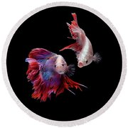 Betta0093 Round Beach Towel