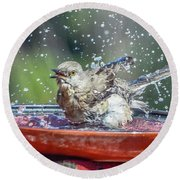 Bird In A Bath Round Beach Towel