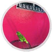 Bird On Cage Round Beach Towel
