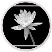 Black And White Water Lily Round Beach Towel