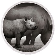 Black Rhinoceros Baby And Cow Round Beach Towel