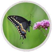 Black Swallowtail Balance Round Beach Towel