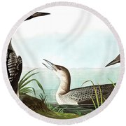 Black Throated Diver, Colymbus Arcticus By Audubon Round Beach Towel