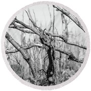 Branches In Black And White Round Beach Towel