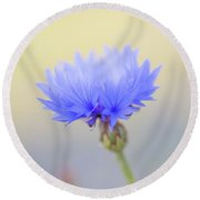 Bright Blue Cornflower Round Beach Towel