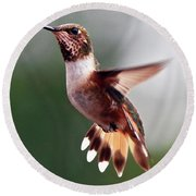 Broad Tailed Hummingbird Round Beach Towel