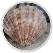 Brown Cockle Shell And Driftwood 2 Round Beach Towel