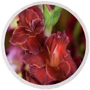 Brown Jewel 5. The Beauty Of Gladiolus Round Beach Towel