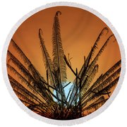 Burmese Fern At Sunset Round Beach Towel by Chris Lord