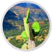 Cactus Round Beach Towel
