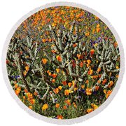 Cactus Poppies And Bluebells Round Beach Towel