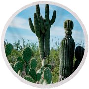 Cactus Twins Have Company Round Beach Towel