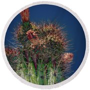 Cactus With Pink Flower Round Beach Towel