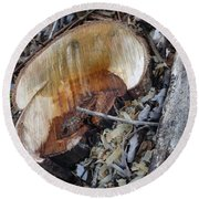 Canal Stumps-014 Round Beach Towel