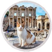 Cat In Front Of The Library Of Celsus Round Beach Towel
