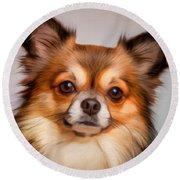 Chihuahua Dog Portrait Round Beach Towel